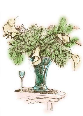 线描画 花瓶系列
