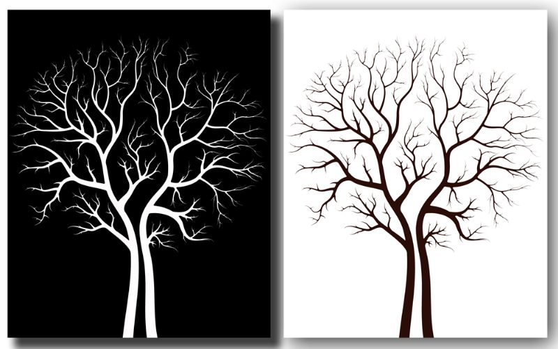 黑白装饰画…来自慕子狸的图片分享图片   黑白装饰画…来高清图片
